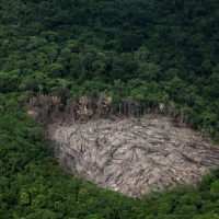 Deforestation in areas neighboring the pig iron cluster in Marab, Par state.