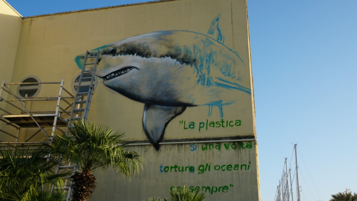 moby dick, plastica d'a-mare