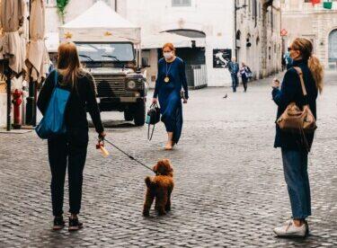 Cani e Covid 19