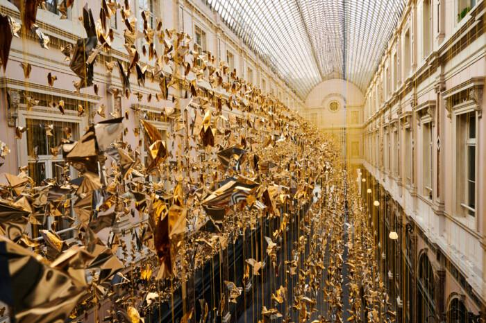50mila colombe_credits Nicolas Lobet