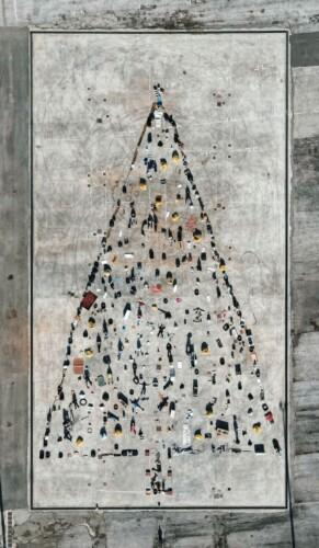 albero rifiuti sava_foto_francesco pulieri