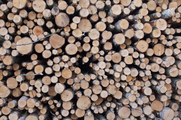 legno_credit Eeva Suorlahti