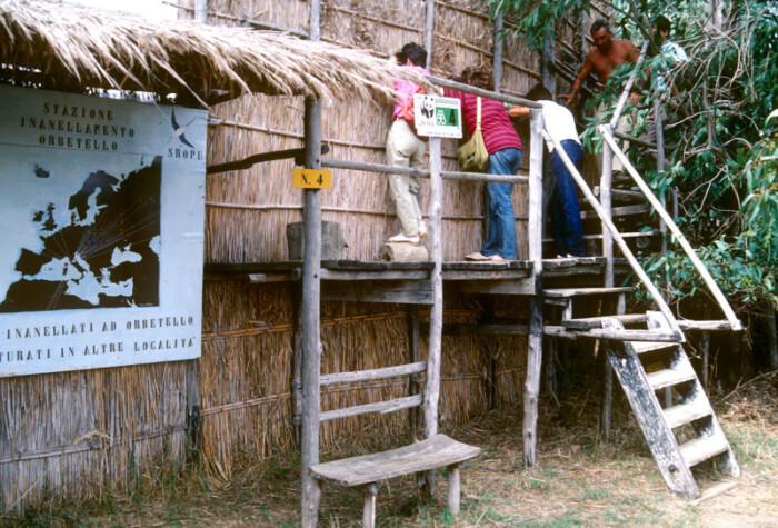 Oasi WWF di Orbetello (Grosseto)