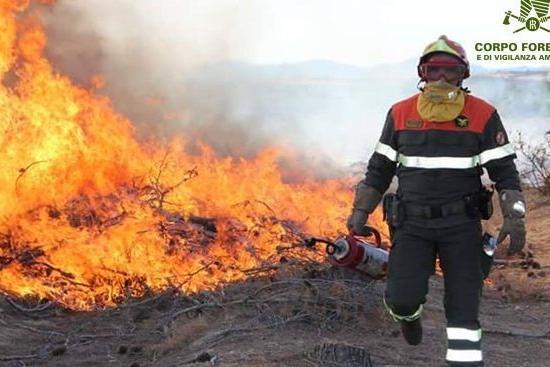 sardegna incendio