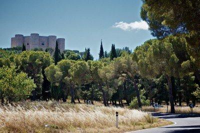 La collina di Castel del Monte si stagliava sull'orizzonte...» (Foto Andrew Potter)